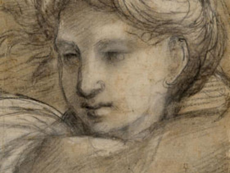Reneszánsz rajzok a Szépművészeti Múzeumban