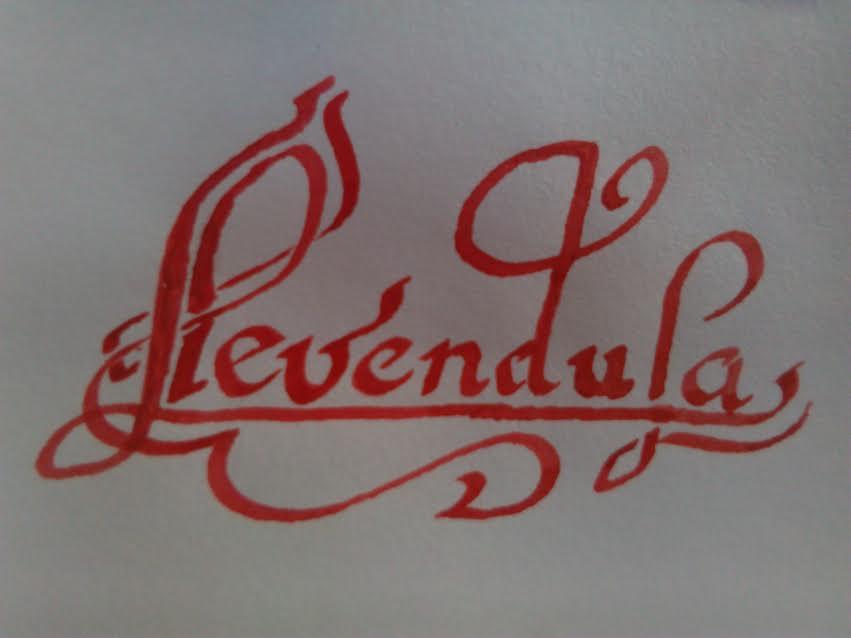 Száz Pál: Irodalom és gyógynövények III. / Levendula