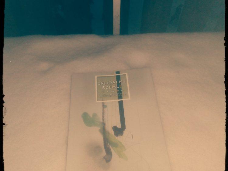 A Szemle télen