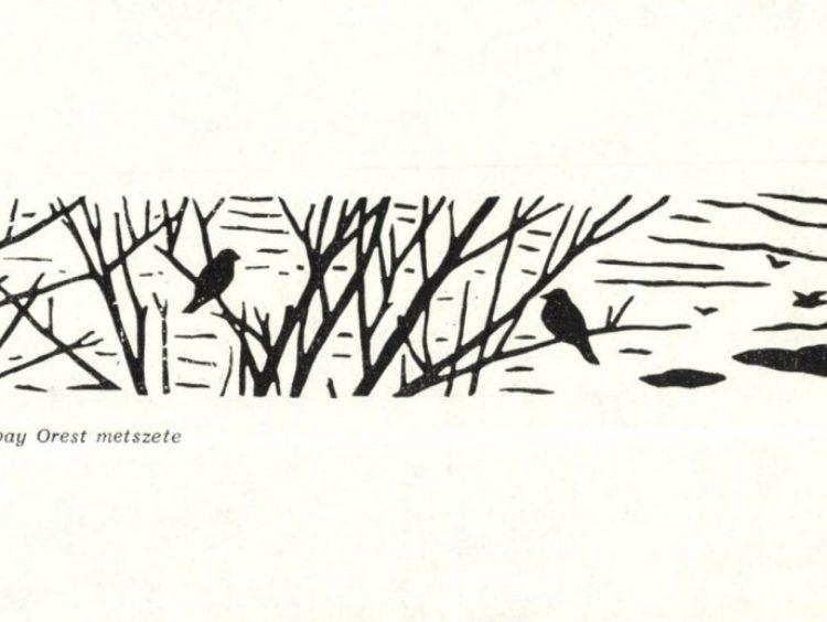 Hát van 60! — Irodalmi Szemle 1963/2