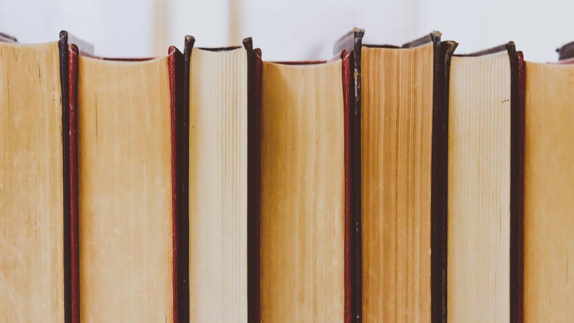 Petneki Noémi: Lengyel női szerzők I. – A szabadság útjai